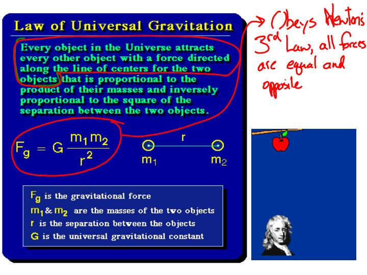 Newton and Gravity