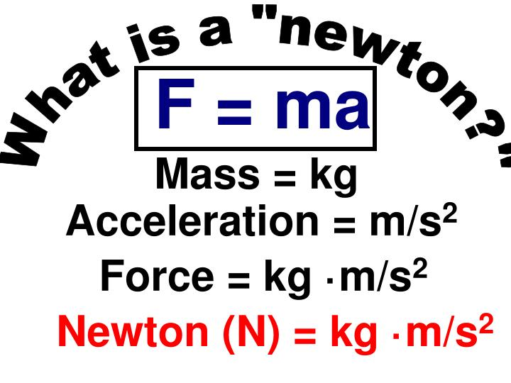"""What is a """"newton?"""""""
