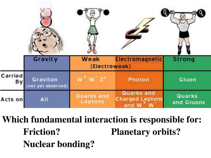 Which fundamental interaction is responsible for: