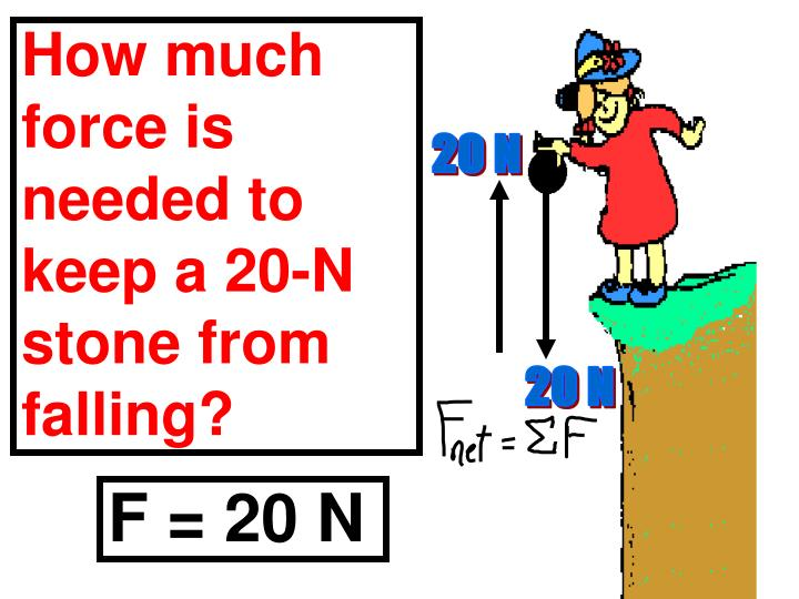 How much force is needed to keep a 20-N stone from falling?