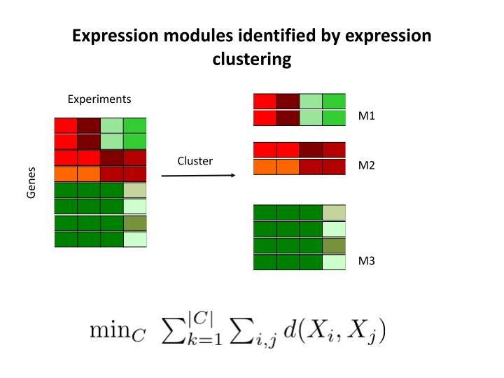 Expression modules identified by expression clustering
