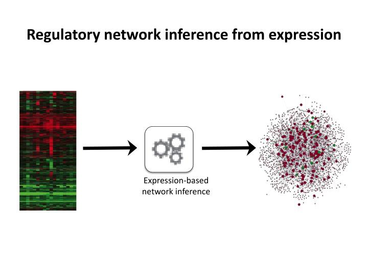 Regulatory network inference from expression