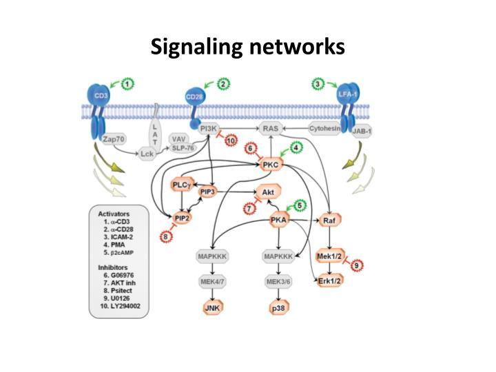 Signaling networks