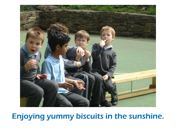Enjoying yummy biscuits in the sunshine.