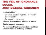 the veil of ignorance social justice egalitarianism