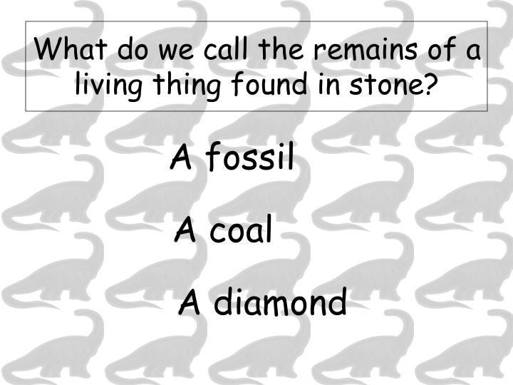 What do we call the remains of a living thing found in stone?