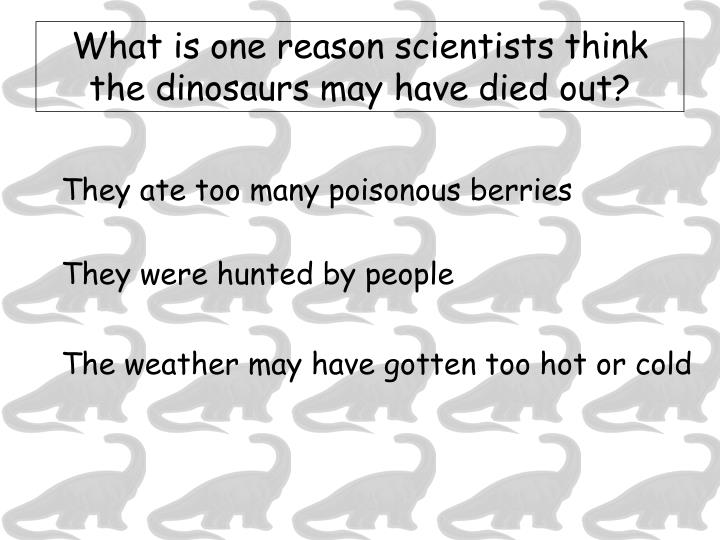 What is one reason scientists think the dinosaurs may have died out?