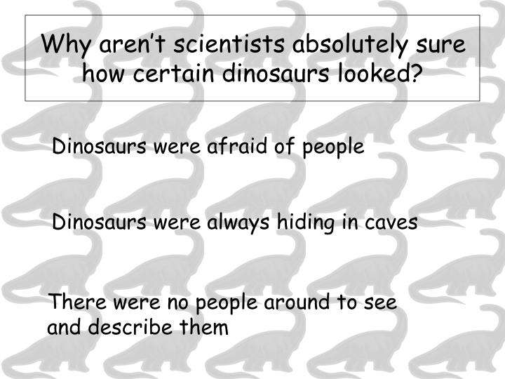Why aren't scientists absolutely sure how certain dinosaurs looked?