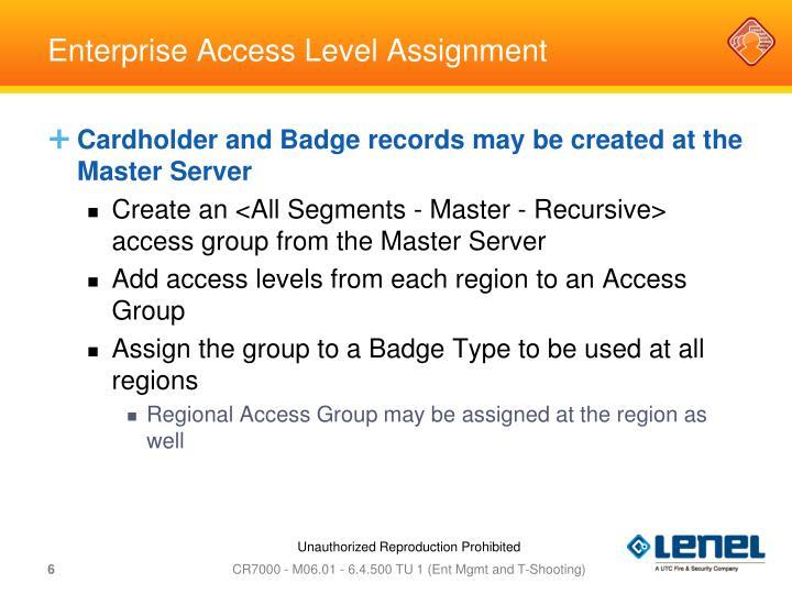 Enterprise Access Level Assignment