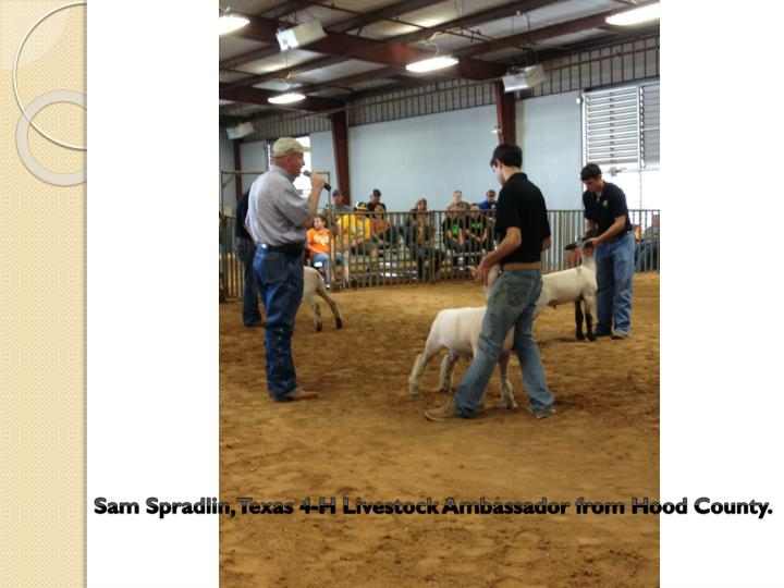 Sam Spradlin, Texas 4-H Livestock Ambassador from Hood County.