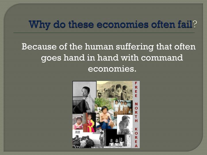 Why do these economies often fail