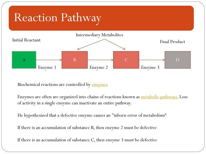 Intermediary Metabolites