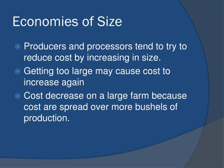 Economies of Size