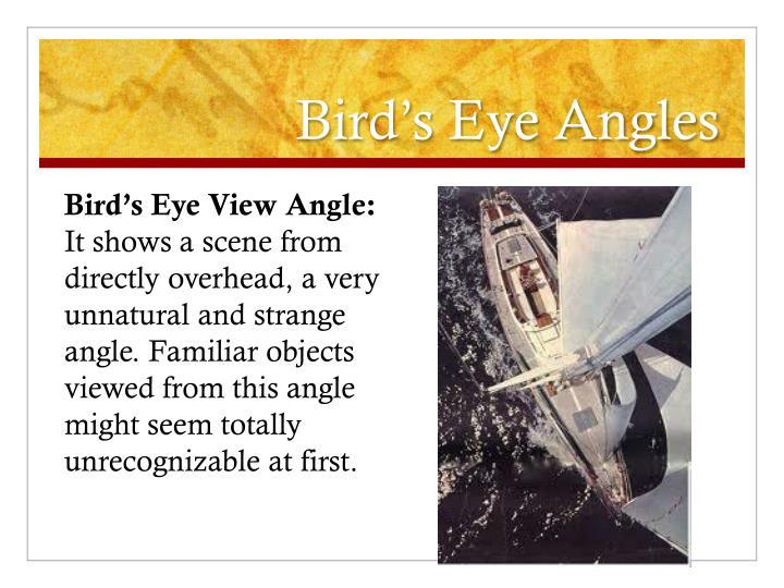 Bird's Eye Angles