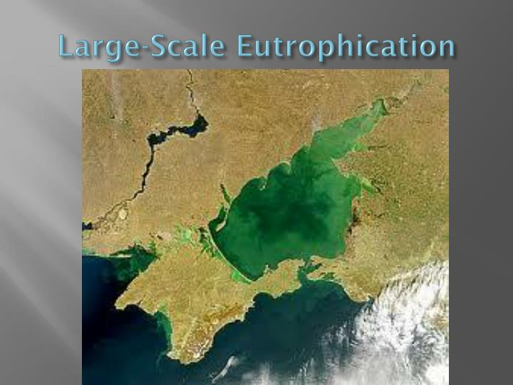 Large-Scale Eutrophication