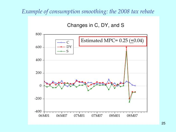 Example of consumption smoothing: the 2008 tax rebate