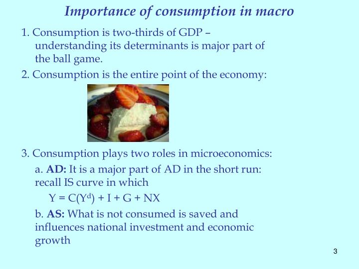 Importance of consumption in macro