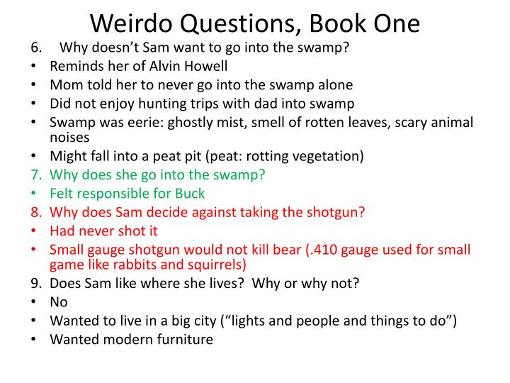 Weirdo questions book one1