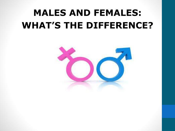 MALES AND FEMALES: