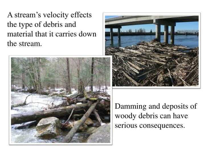 A stream's velocity effects the