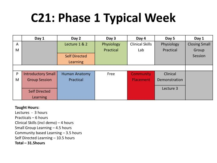 C21: Phase 1 Typical Week