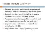 rizzoli institute overview
