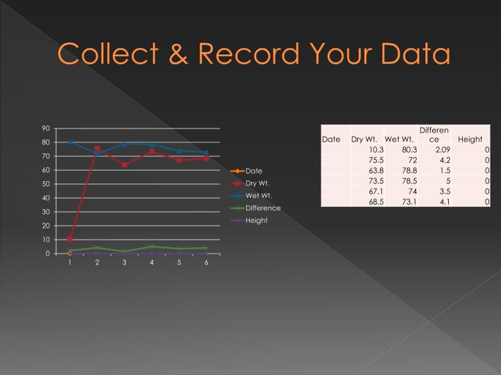 Collect & Record Your Data
