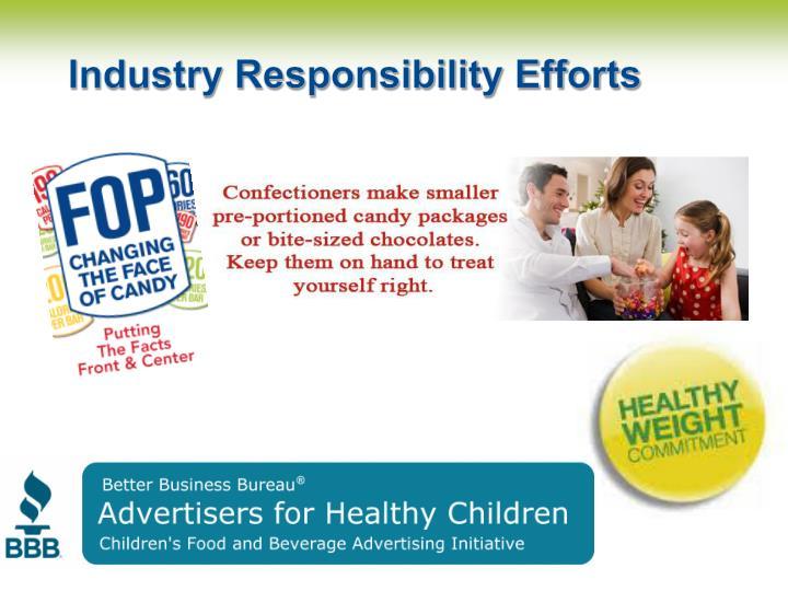 Industry Responsibility Efforts