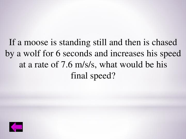 If a moose is standing still and then is chased