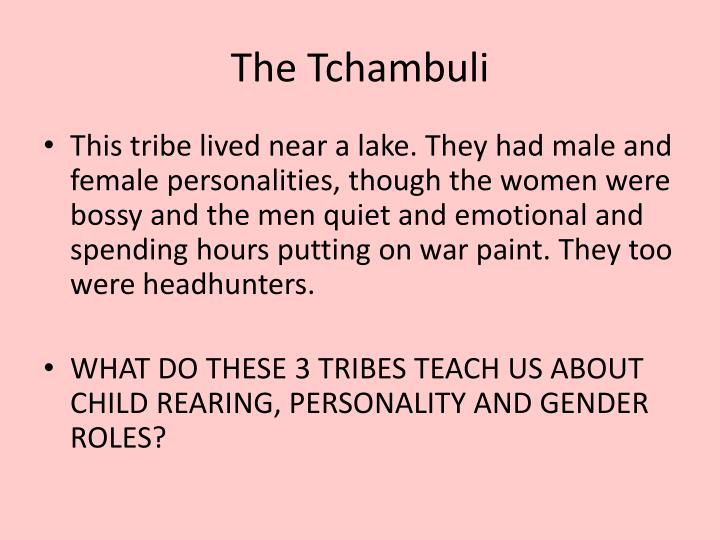 The Tchambuli