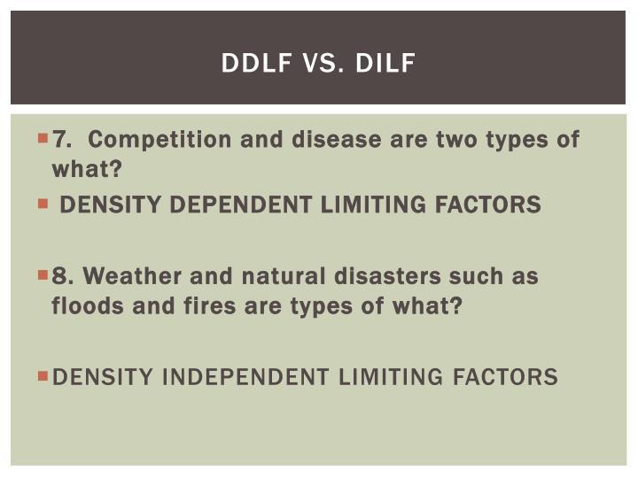 DDLF VS.