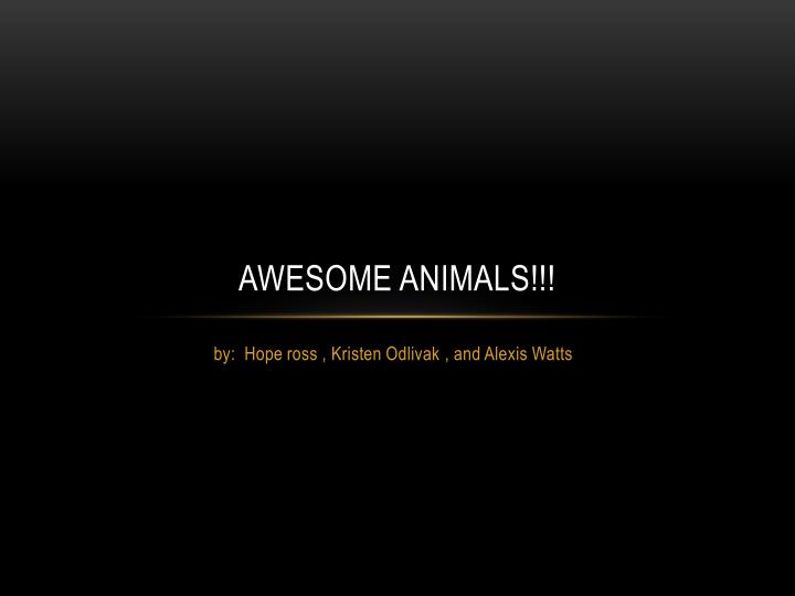 Awesome animals!!!