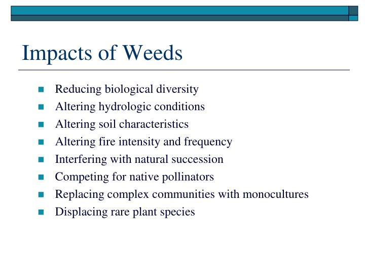 Impacts of Weeds