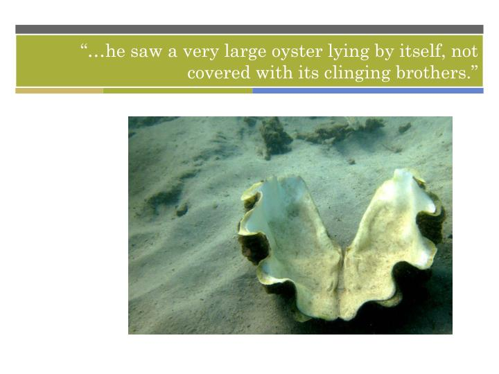 """…he saw a very large oyster lying by itself, not covered with its clinging brothers."""