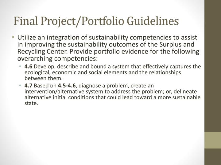 Final Project/Portfolio Guidelines
