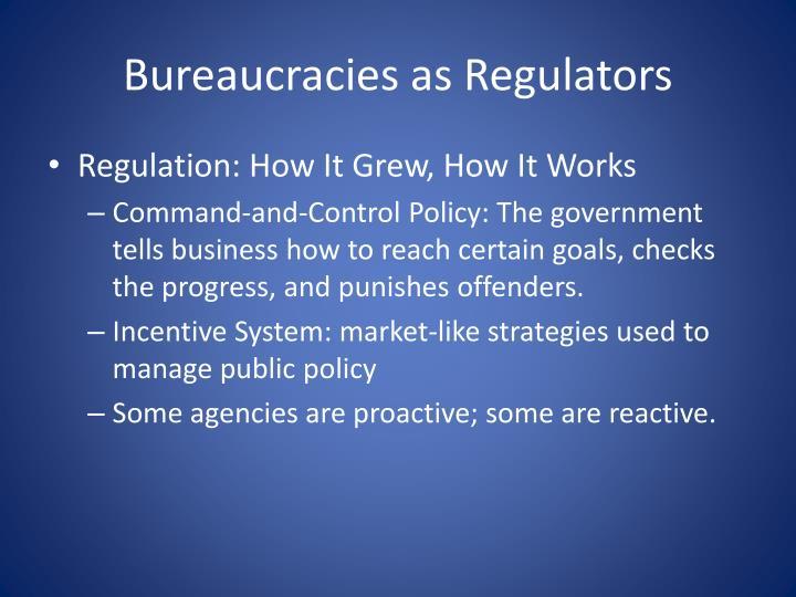 Bureaucracies as Regulators