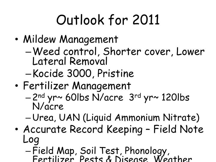 Outlook for 2011