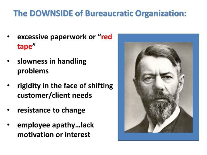 The DOWNSIDE of Bureaucratic Organization: