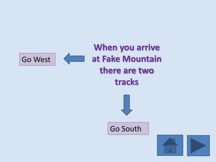 When you arrive at Fake Mountain there are two tracks