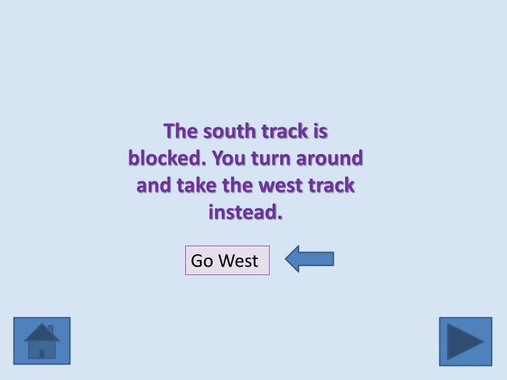 The south track is blocked. You turn around and take the west track instead.
