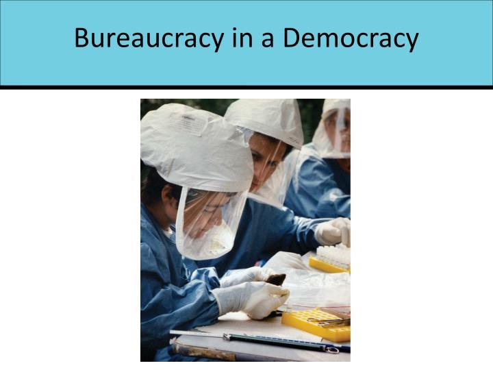 Bureaucracy in a Democracy
