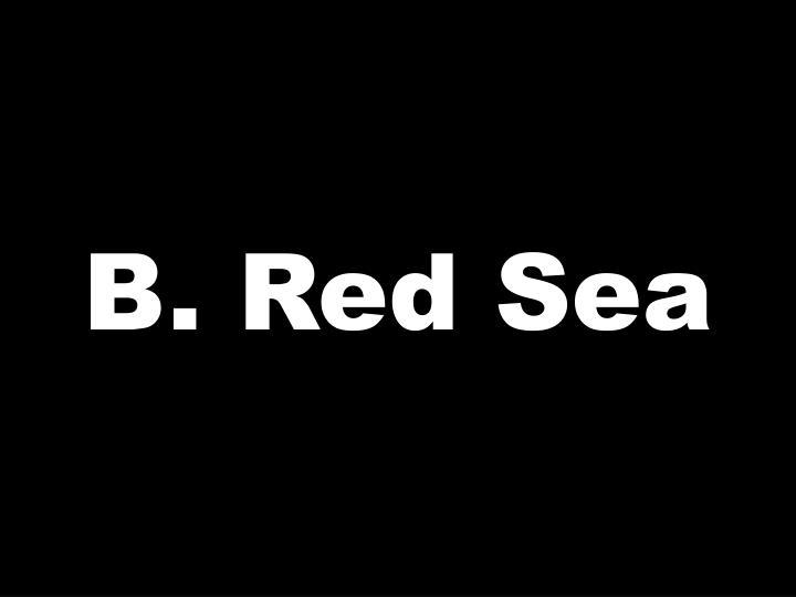 B. Red Sea