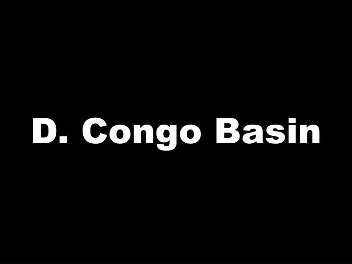 D. Congo Basin