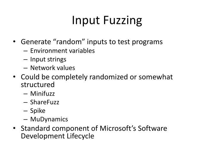 Input Fuzzing