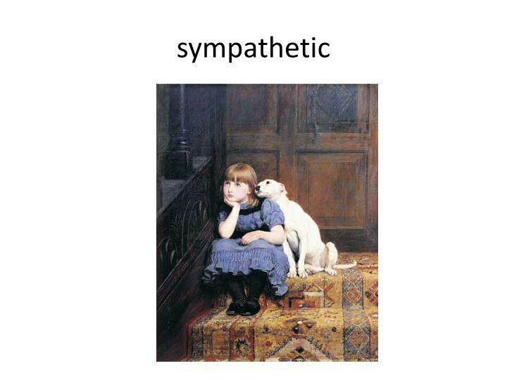 sympathetic