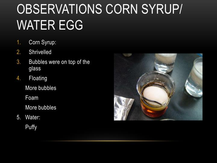 Observations Corn Syrup/ Water Egg