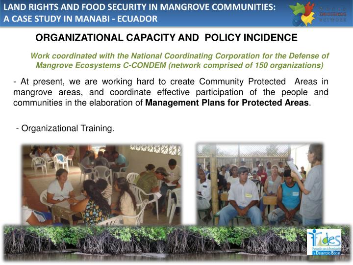 LAND RIGHTS AND FOOD SECURITY IN