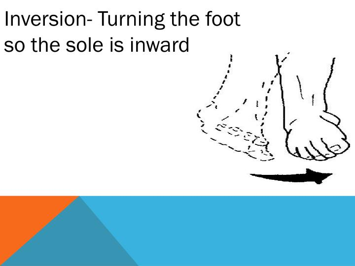Inversion- Turning the foot so the sole is inward