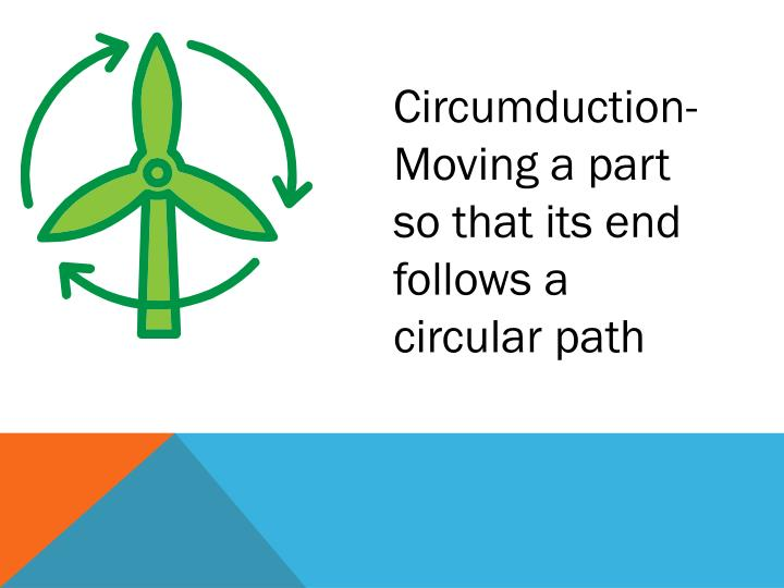 Circumduction-
