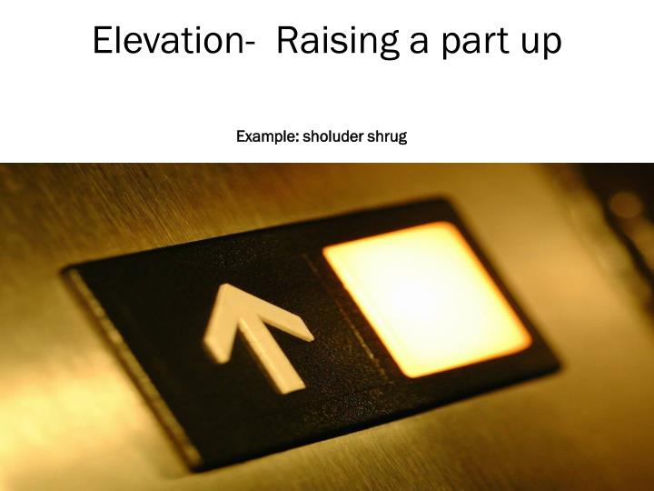 Elevation-  Raising a part up